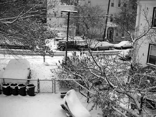 snowin.jpg