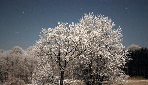 winternacht.jpg